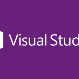 Visual Studio Professional 2015 - Open Business